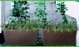 Varda Planter